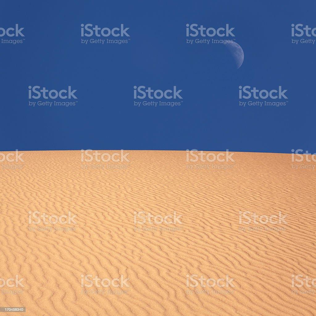 Desert moon royalty-free stock photo