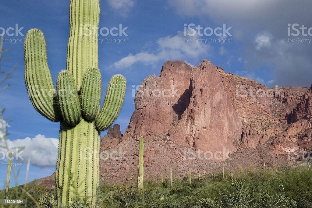 Desert Mountain Landscape stock photo