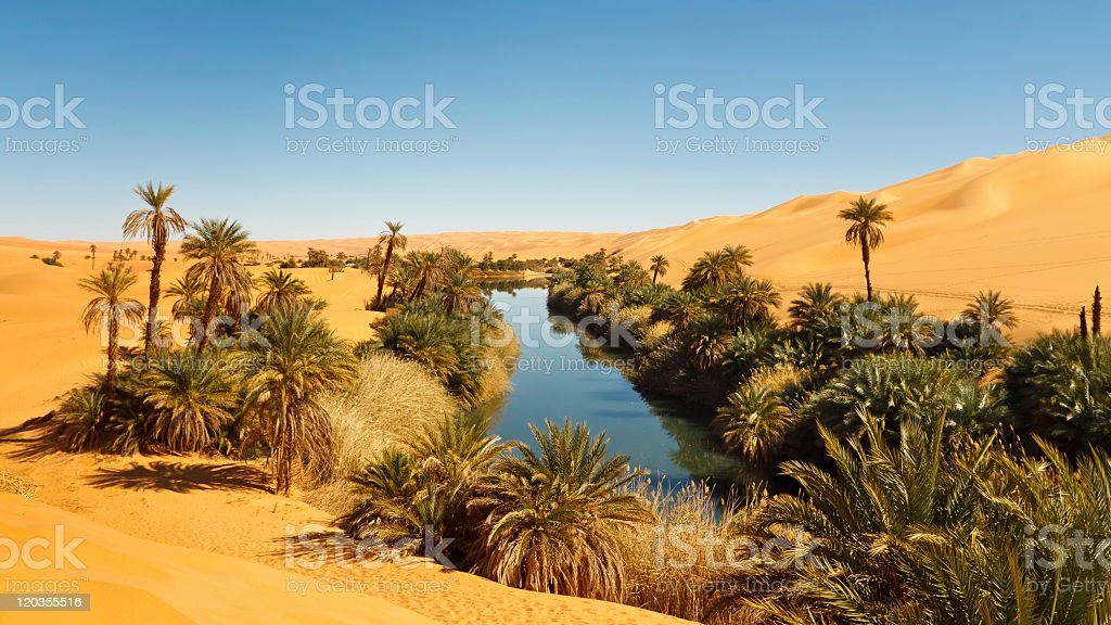 A Desert Oasis in Sahara, Libya stock photo
