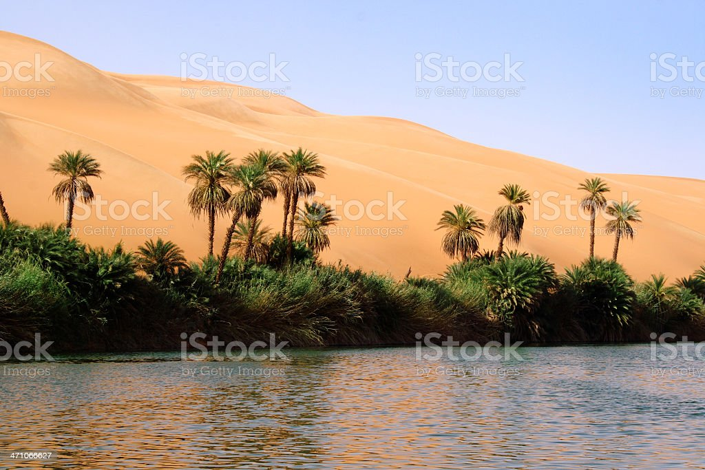 Desert Oasis Libya: Awbari stock photo
