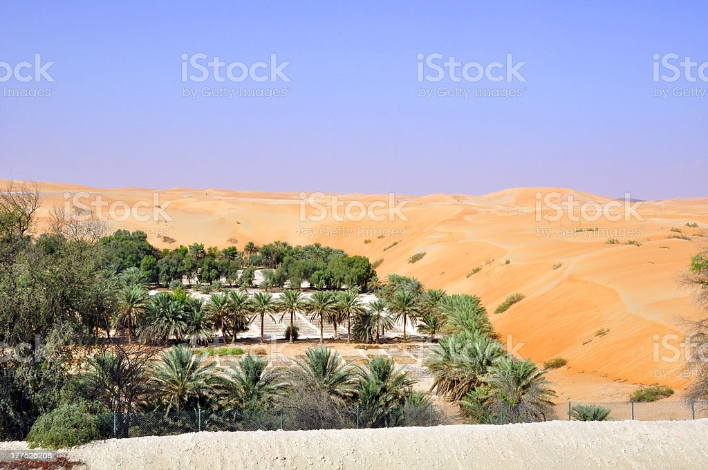 Desert Oasis stock photo