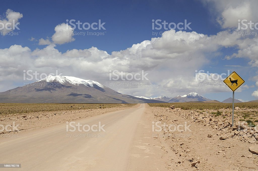 Desert on the altiplano. Andes in Bolivia. royalty-free stock photo