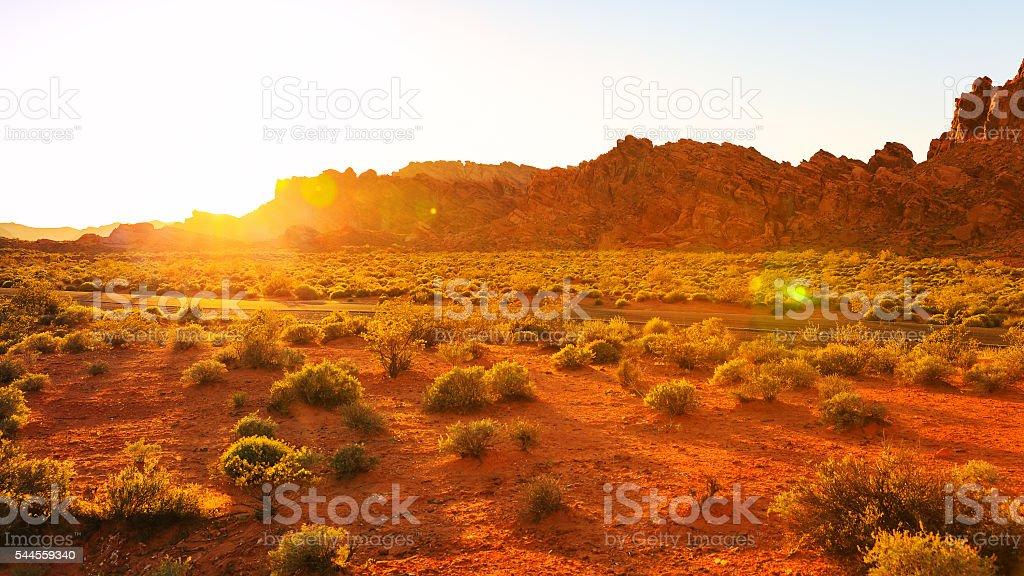 Desert over sunset, Nevada stock photo