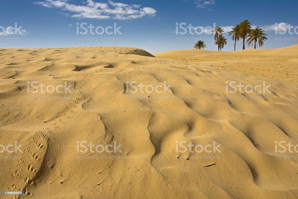 Desert royalty-free stock photo