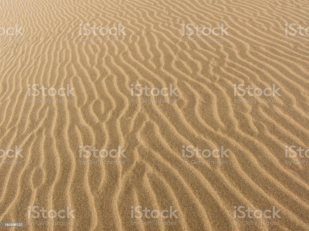 Desert royalty-free stock photo