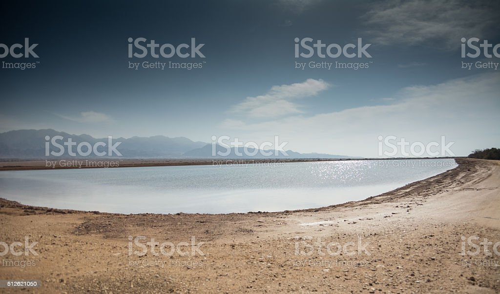 Desert pond stock photo