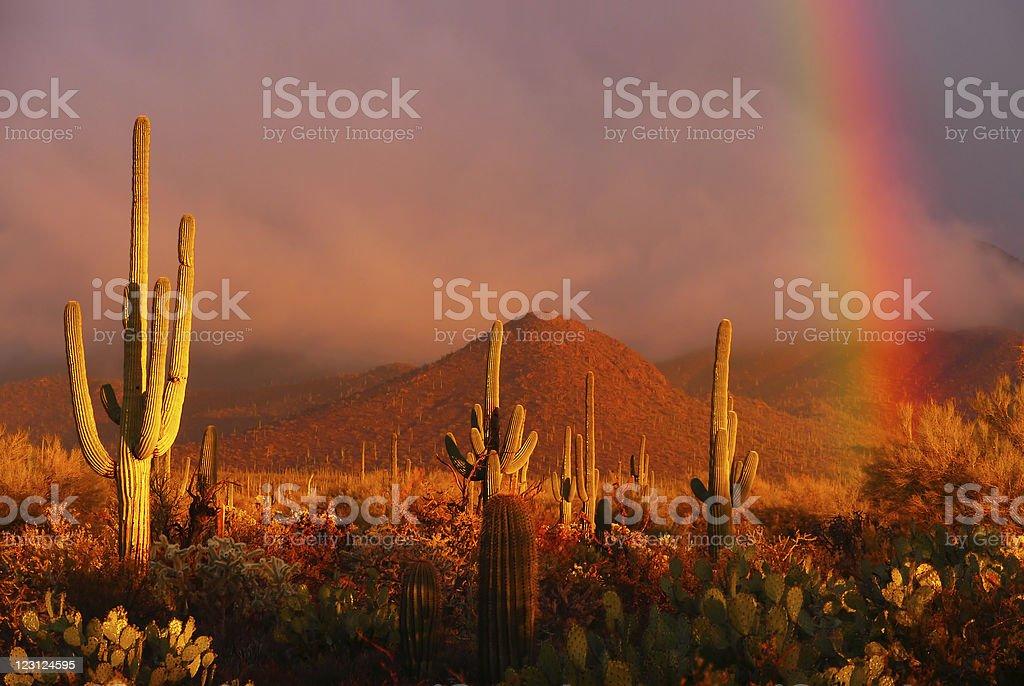 Desert Rainbow royalty-free stock photo