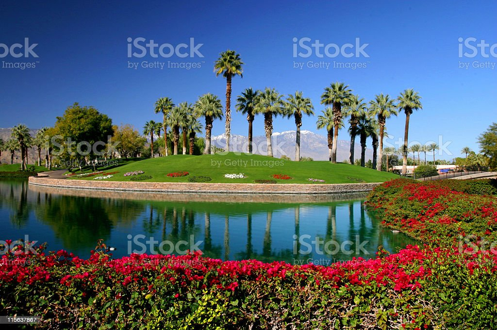 desert resort lake stock photo