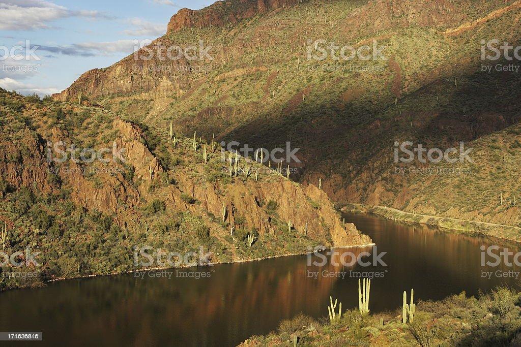 Desert River Landscape Cactus stock photo