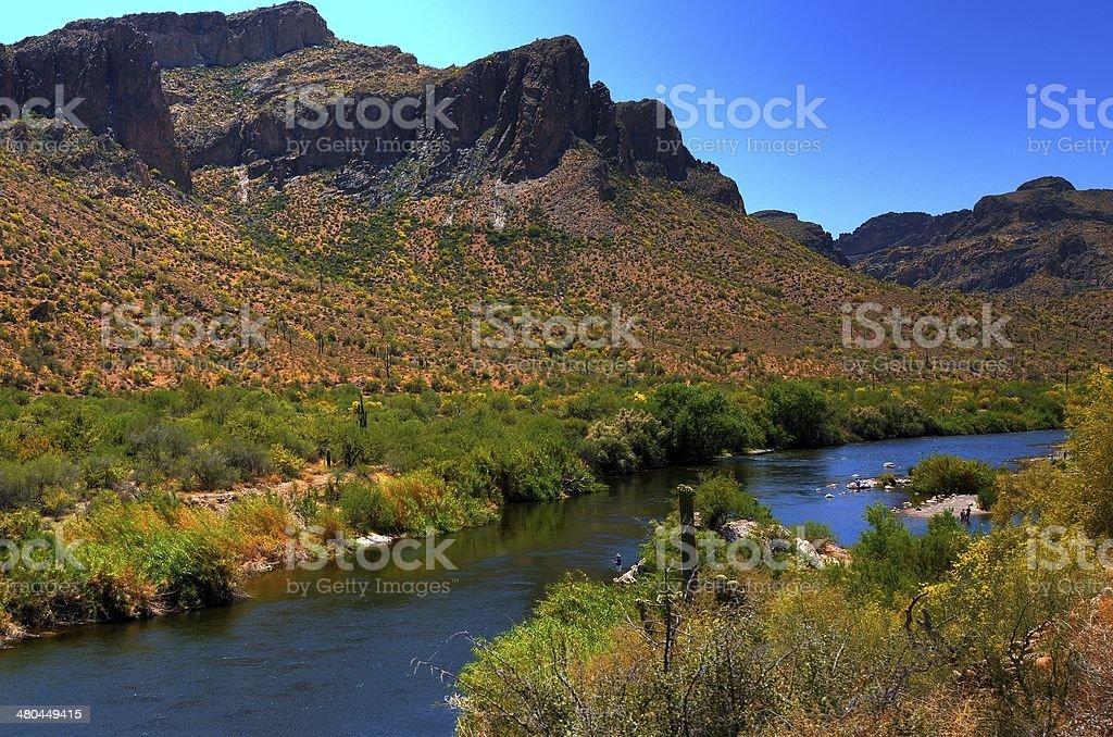 Desert River royalty-free stock photo
