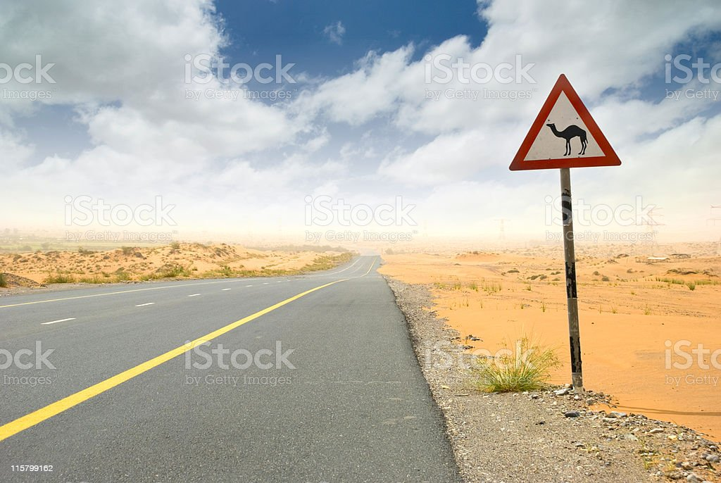 Desert road and Warning camel ahead sign royalty-free stock photo