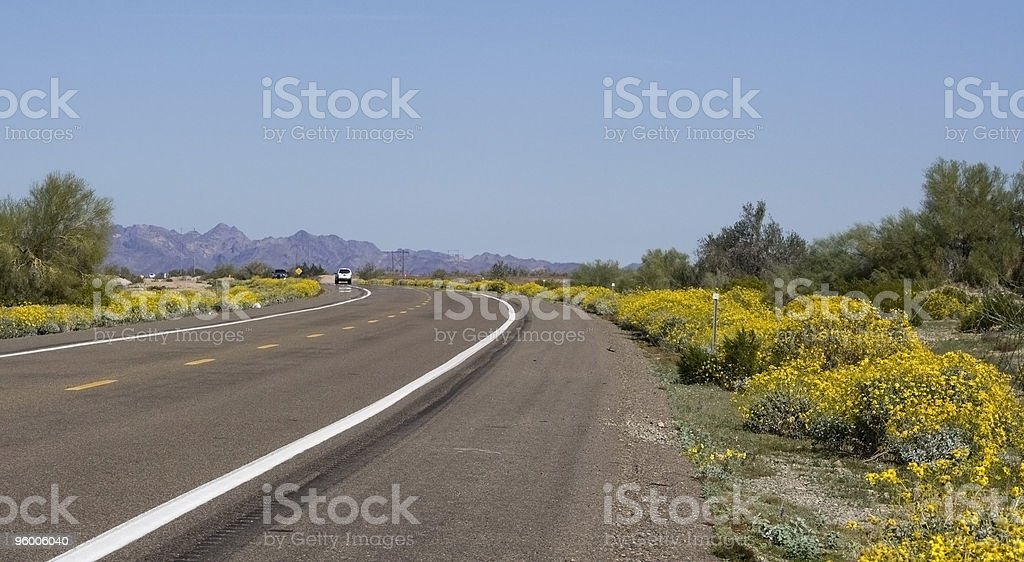 Desert Road Divided Highway royalty-free stock photo