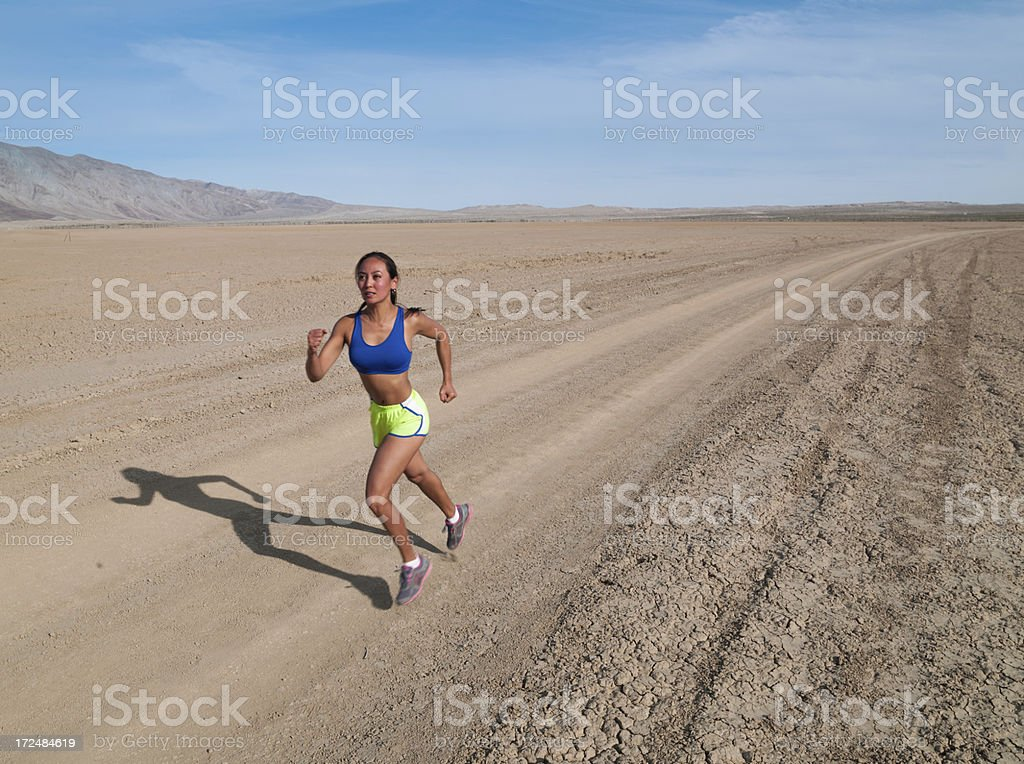 Desert Road Runner royalty-free stock photo