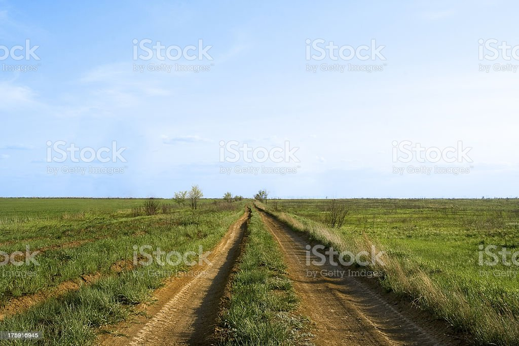 Desert road to horizon and deep blue sky royalty-free stock photo