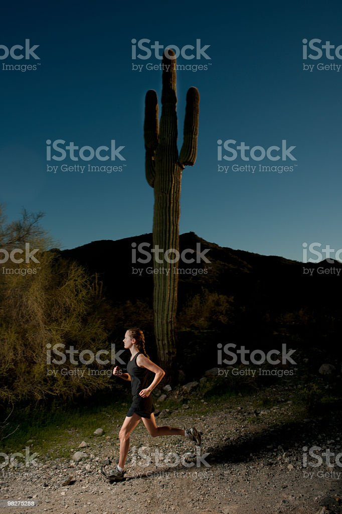 Desert Run royalty-free stock photo