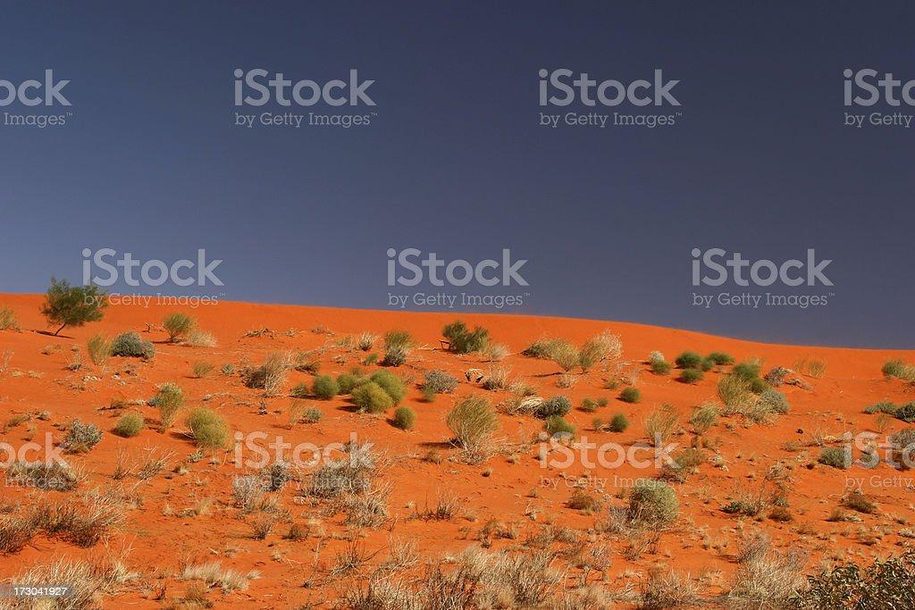 Desert Sandhill stock photo