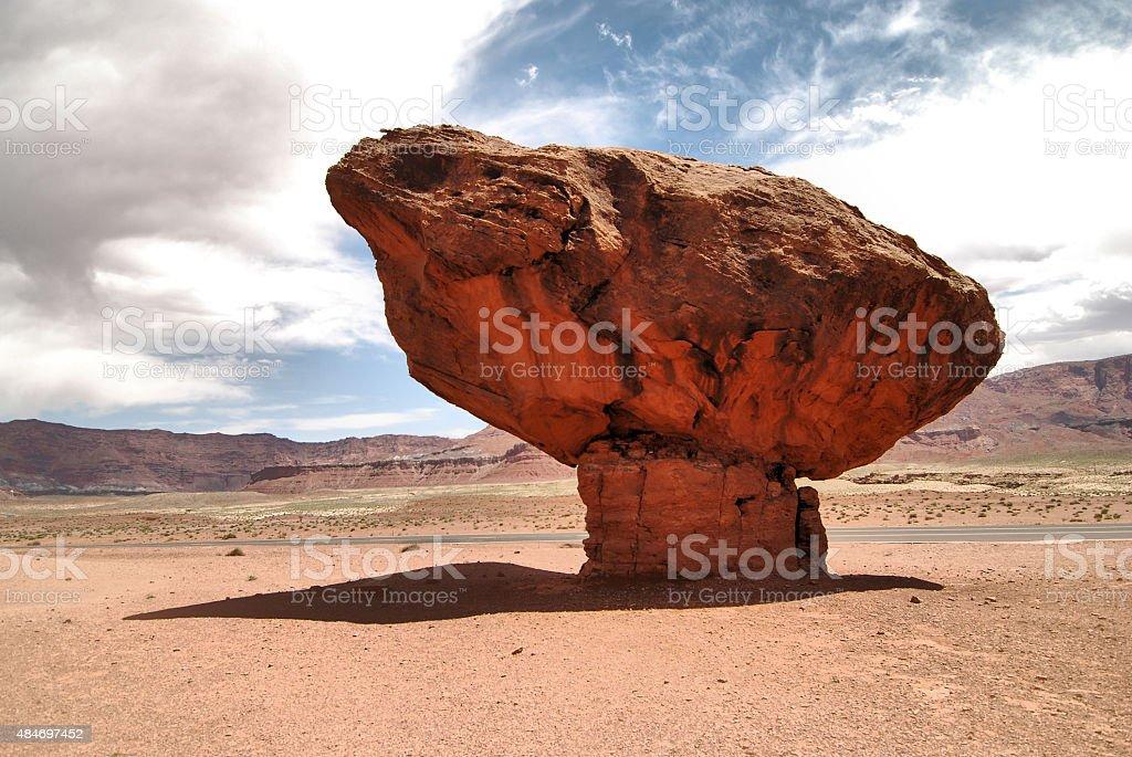 Desert Shroon stock photo
