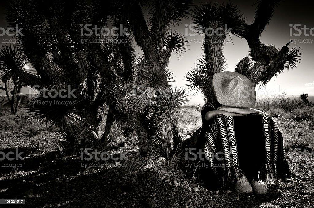 Desert Siesta royalty-free stock photo