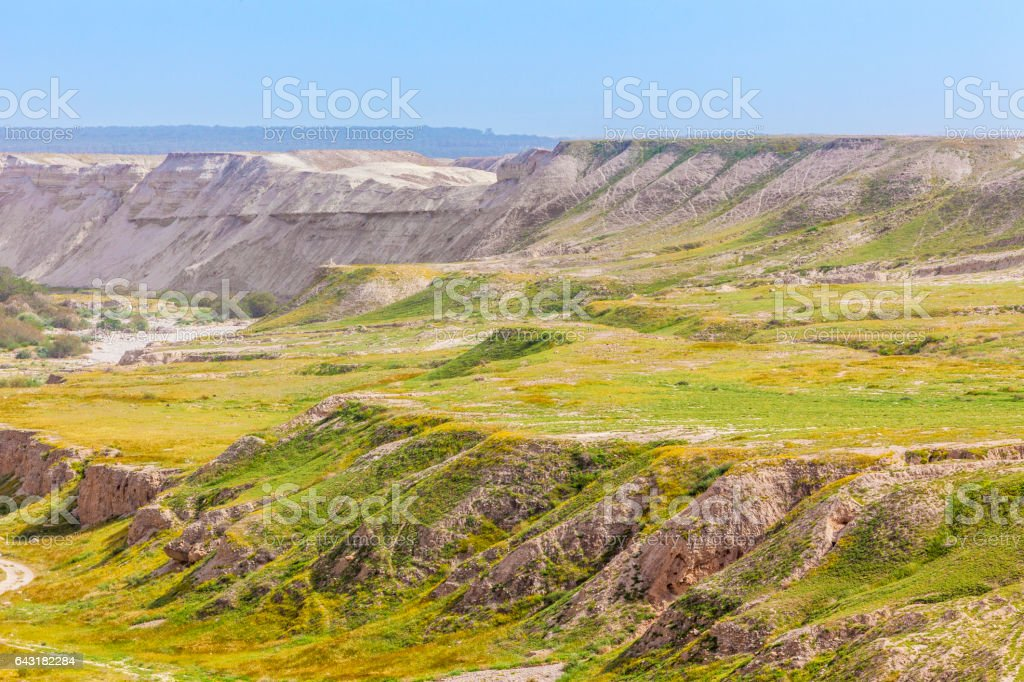 Desert slopes with vegetation at spring stock photo