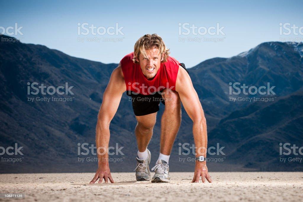 Desert Sprinter royalty-free stock photo