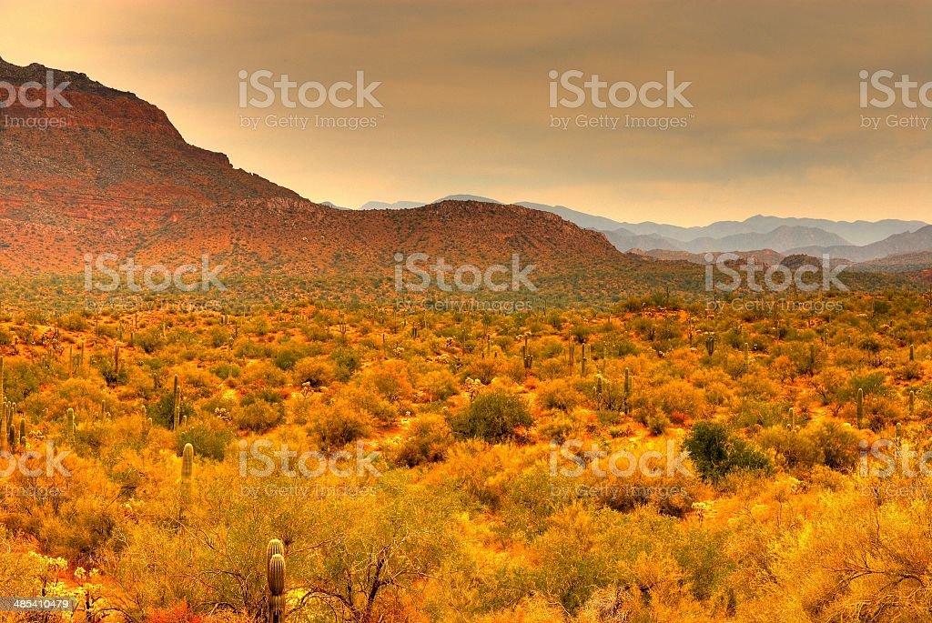 Desert Storm Approaching royalty-free stock photo