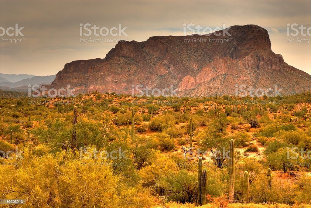 Desert Storm Approaching royalty-free stock photo