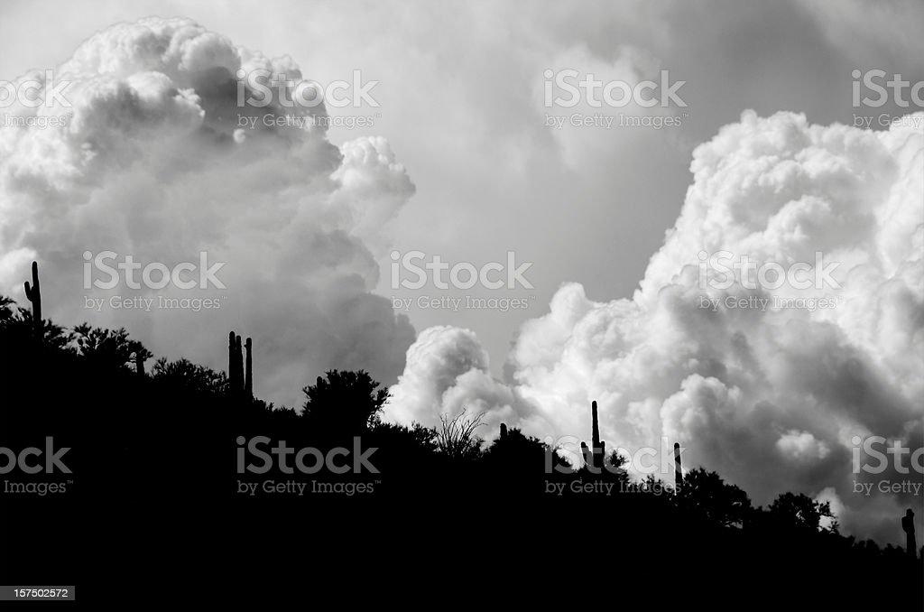 Desert Storm Coming royalty-free stock photo