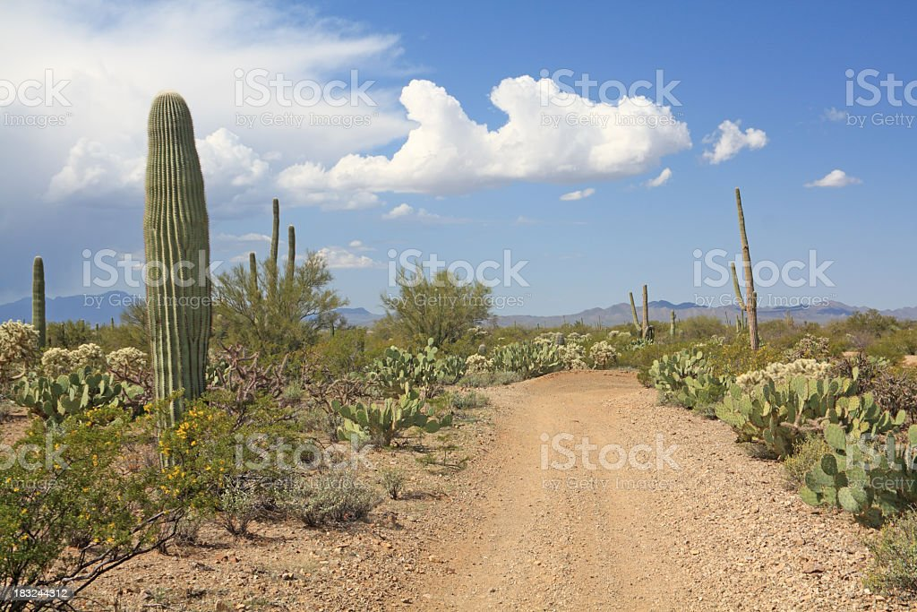 Desert Storm Moves In stock photo