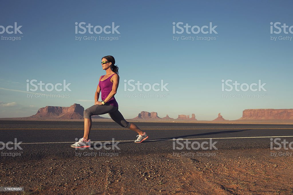 Desert Stretch royalty-free stock photo