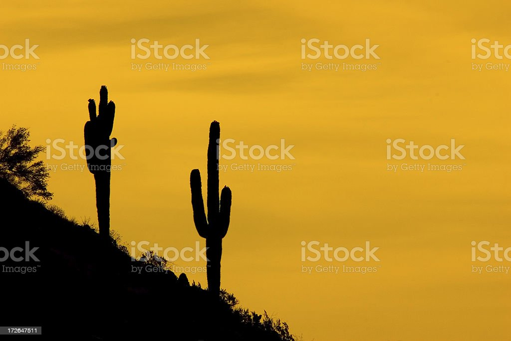 Desert Sunrise royalty-free stock photo