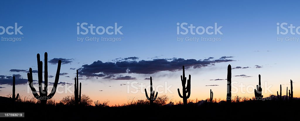 Desert Sunset Panorama royalty-free stock photo
