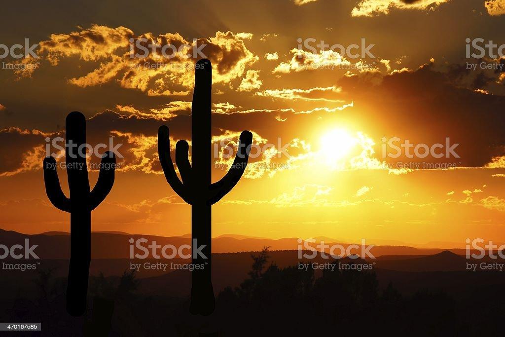 Desert sunset with saguaro cactus silhouette, Arizona, USA stock photo