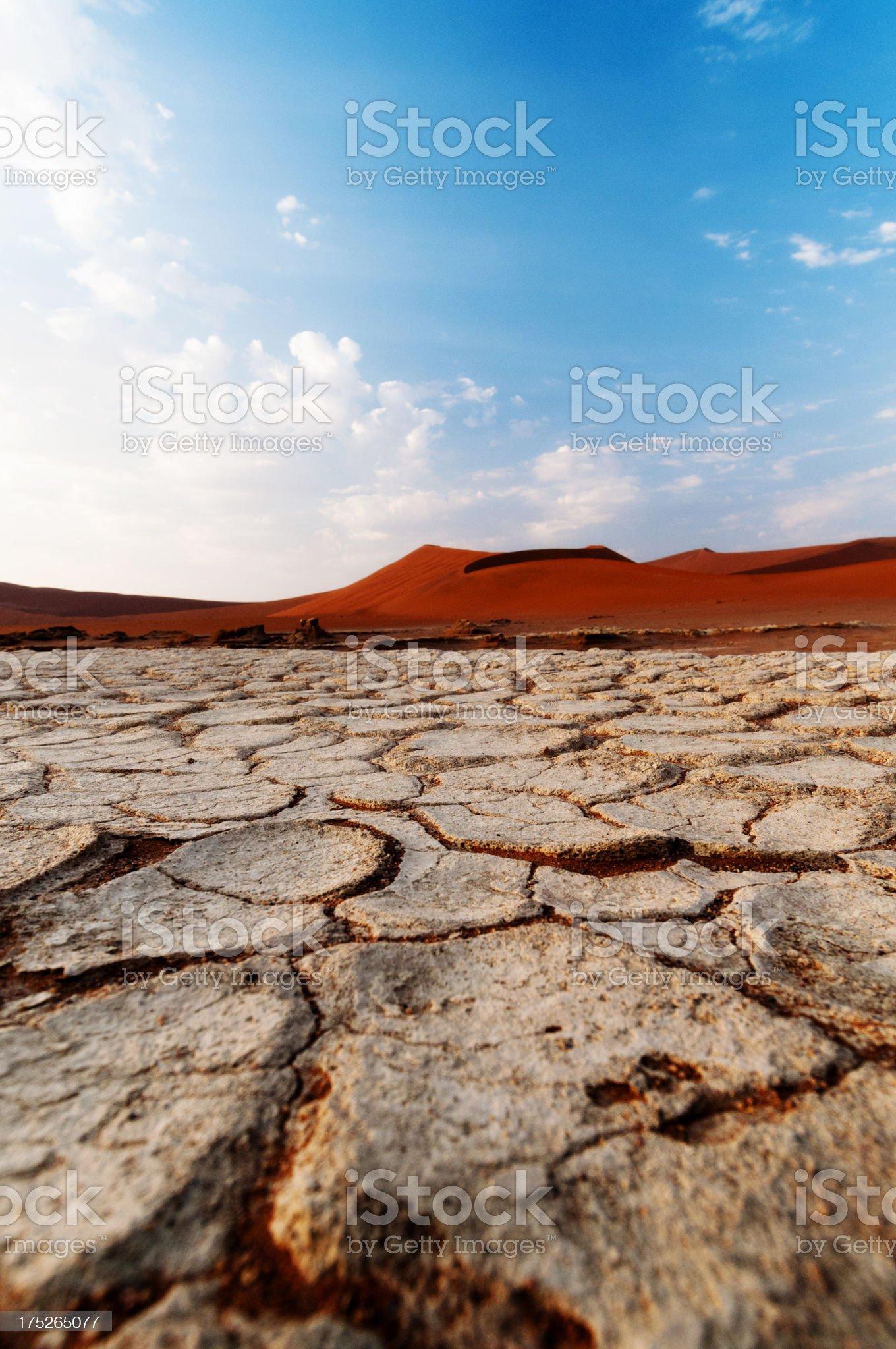 Desert surface royalty-free stock photo