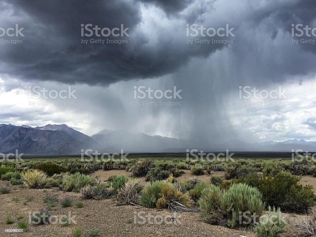 Desert Thunderstorm stock photo