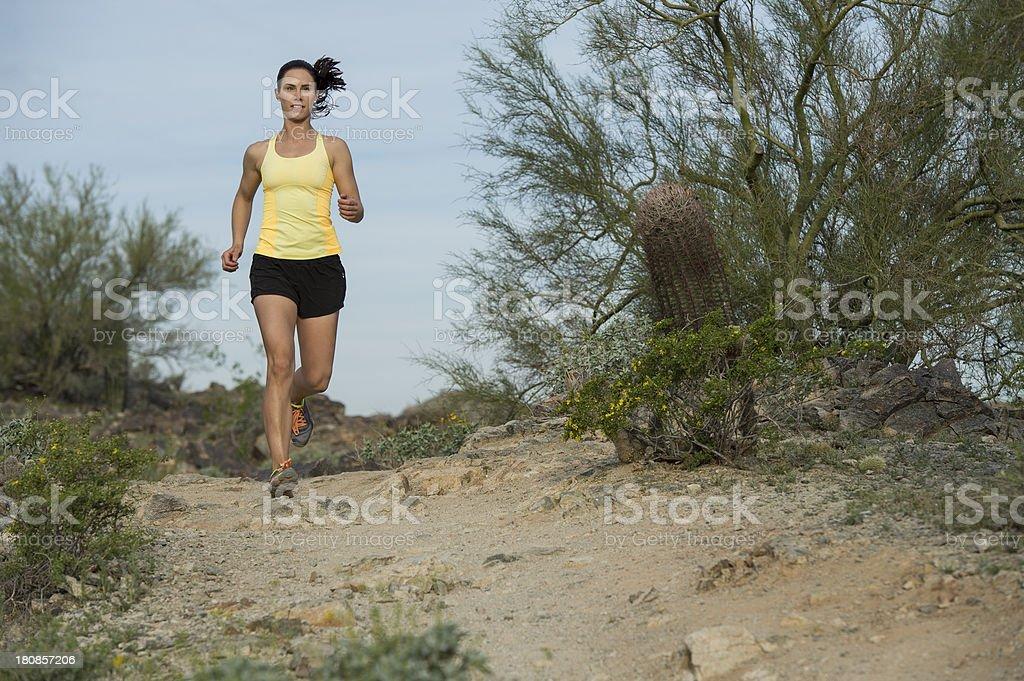 Desert Trail Run royalty-free stock photo