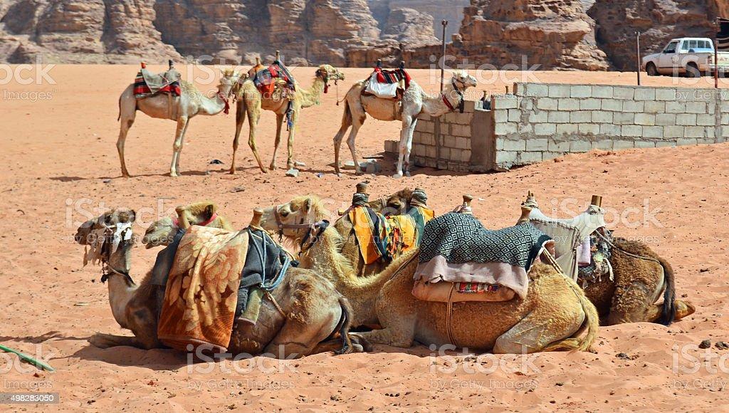 Desert Transportation stock photo