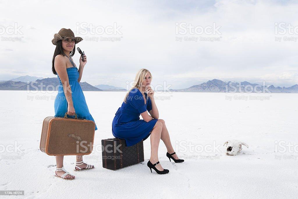 Desert Traveling royalty-free stock photo
