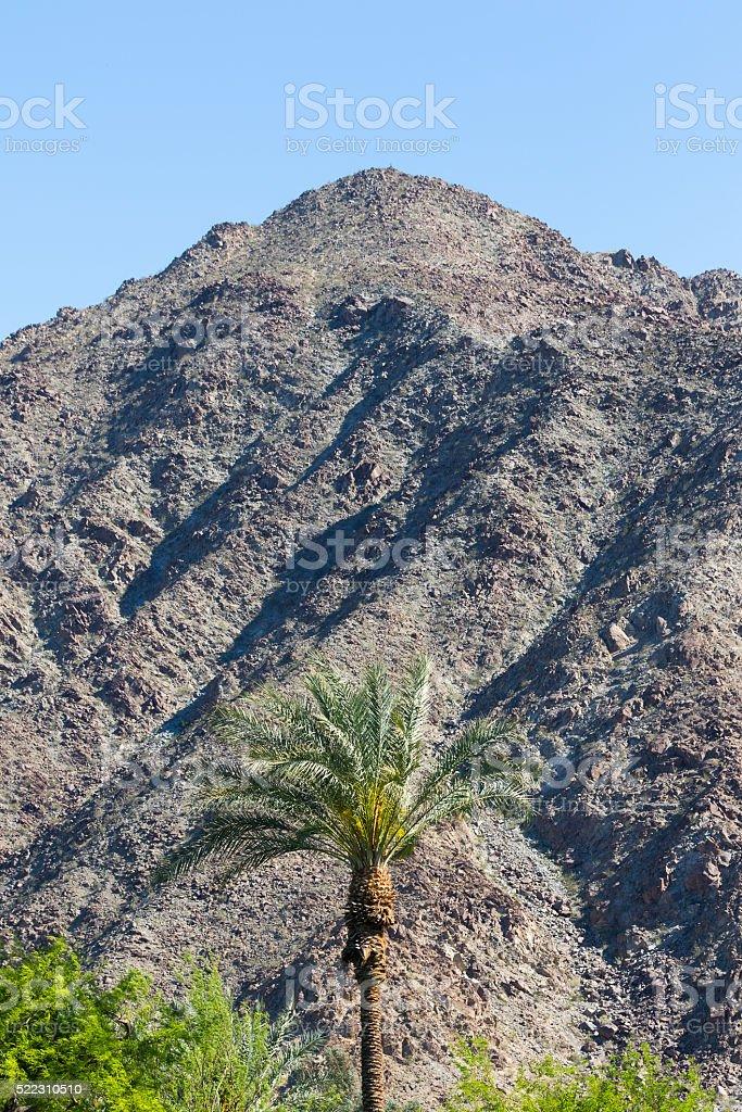 Desert View stock photo