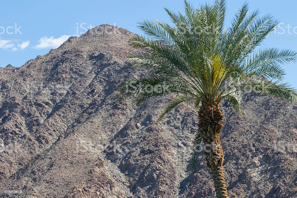 Desert View stock photo
