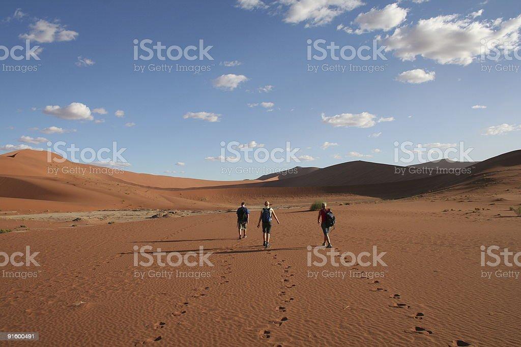 Desert Walking royalty-free stock photo