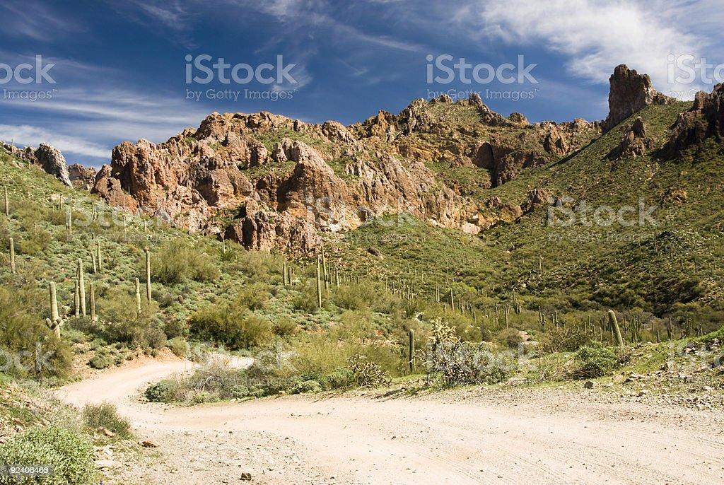 desert wilderness royalty-free stock photo