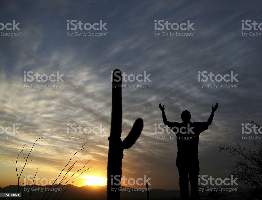 Desert Worship royalty-free stock photo
