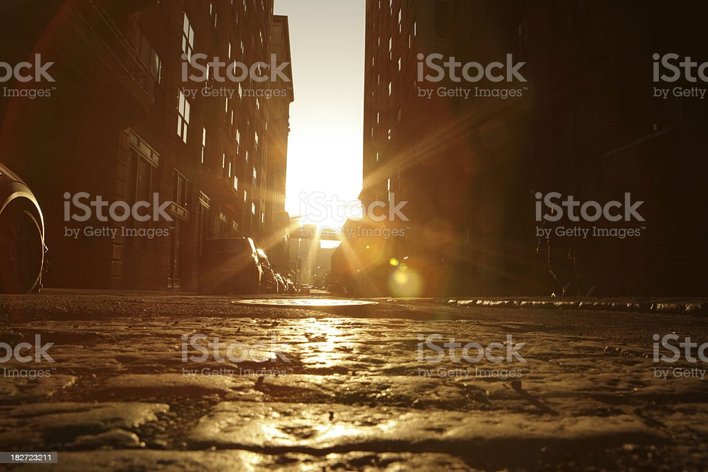 Deserted Brooklyn Backstreet Sunset Cobblestone View Golden Lens Flare royalty-free stock photo