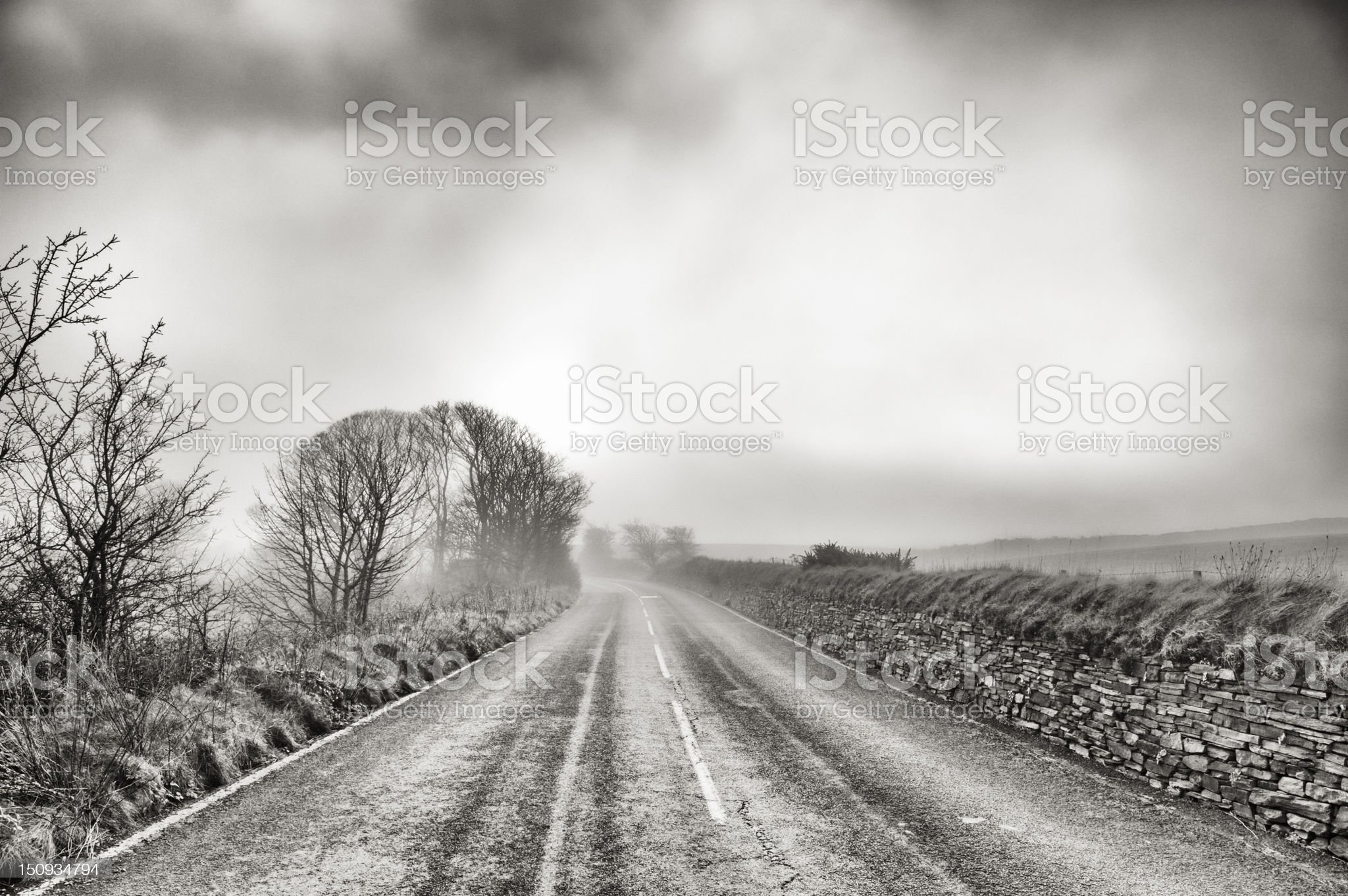 deserted country road on a misty winter morning royalty-free stock photo