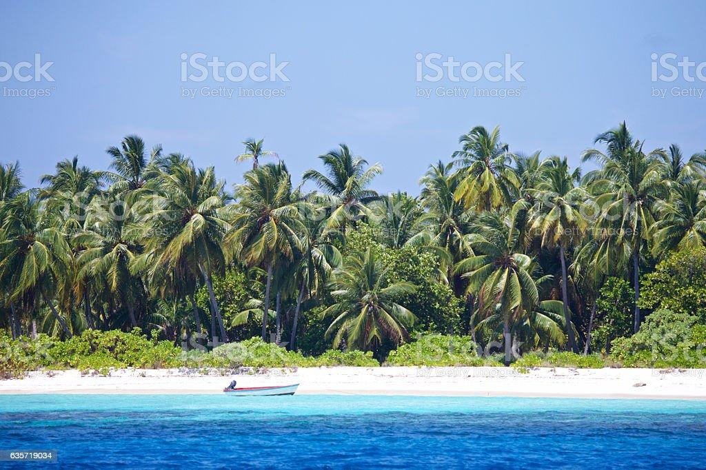 Deserted dingy on a tropical beach stock photo