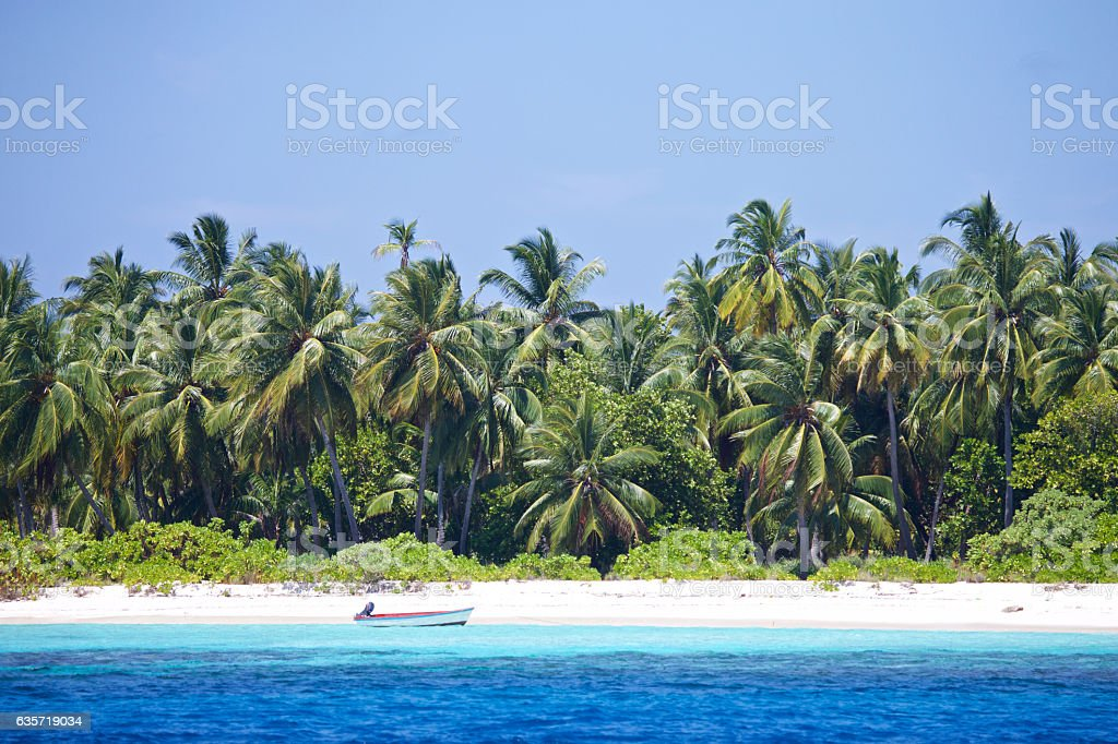 Deserted dingy on a tropical beach stock photo