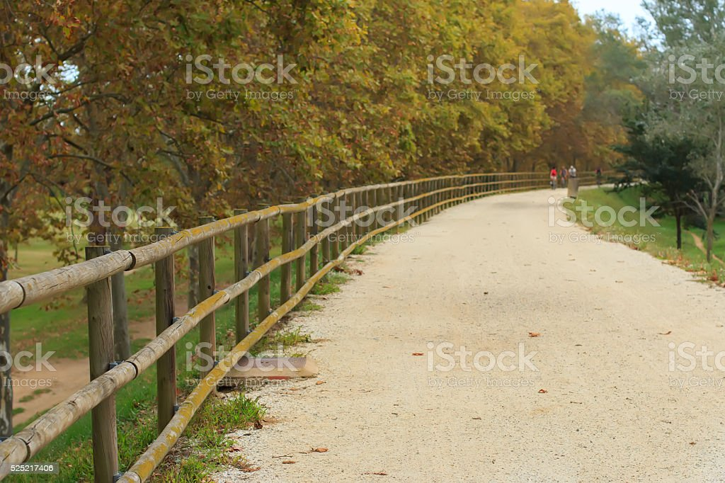 Deserted gravel hiking path among ambient greenery stock photo