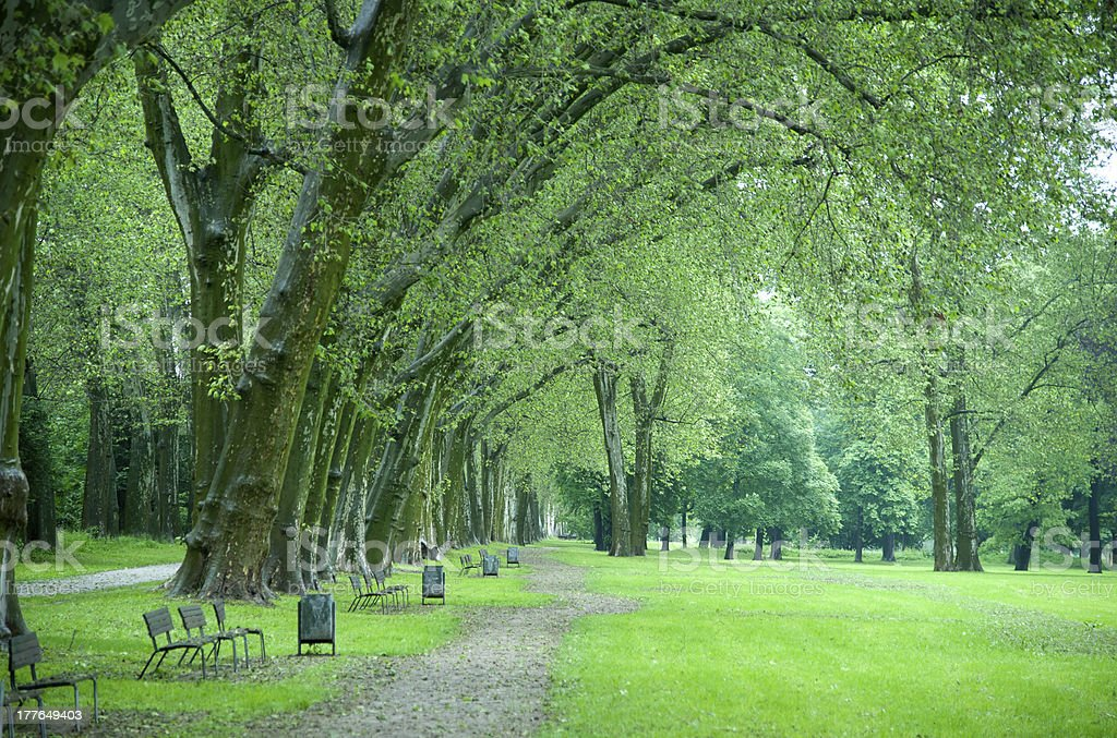 deserted royalty-free stock photo