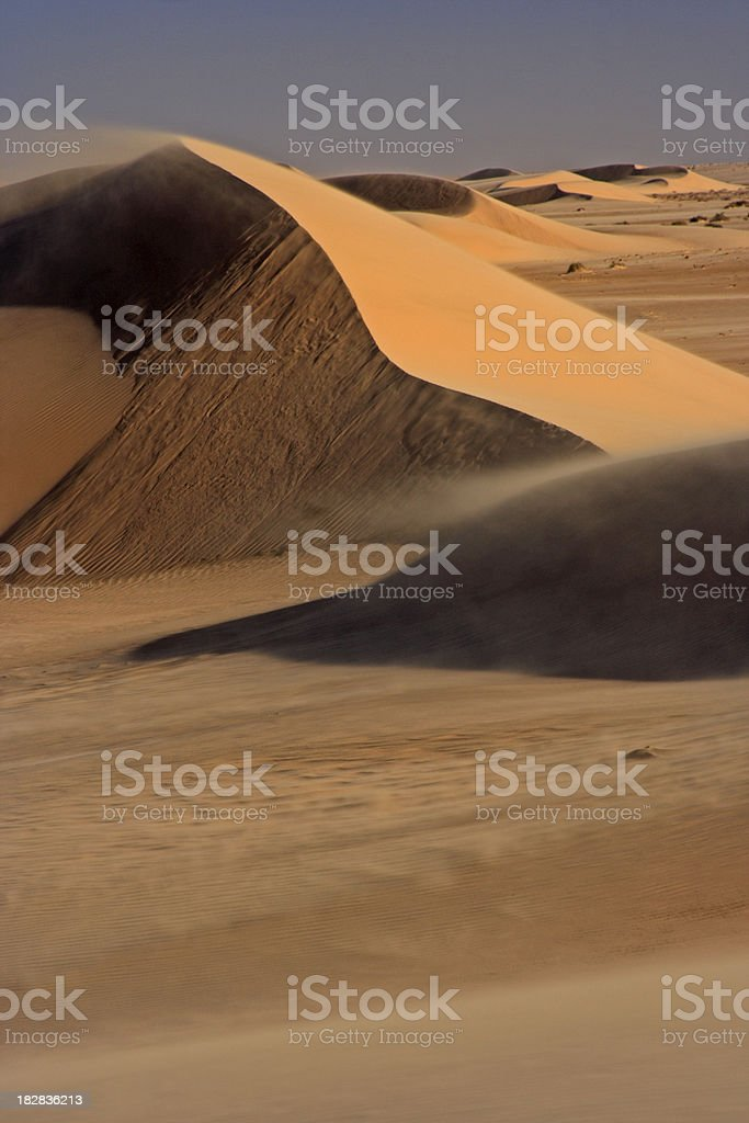 Desertscape portrait stock photo