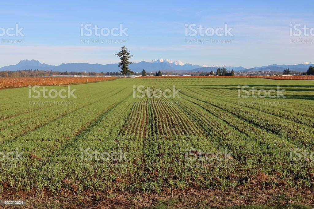 Designated Agricultural Land Use stock photo